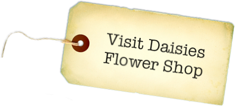 Visit Daisies Flower Shop